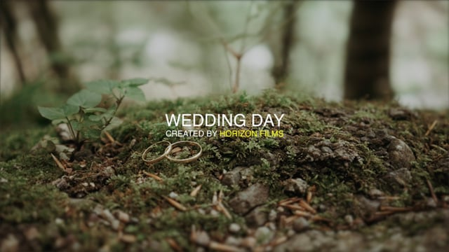 D I M A N A S T Y A wedding highlights