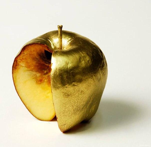 образом картинка гнилое яблоко внутри очень хорошие