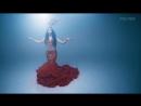 Gipsy Kings - Mira La Gitana Mora