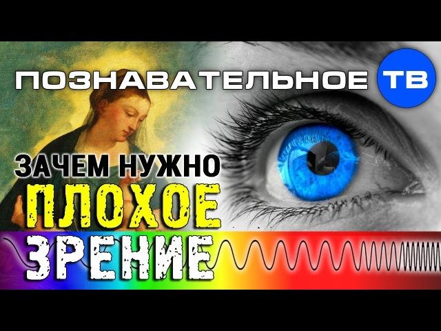 Зачем нужно плохое зрение Познавательное ТВ Артём Войтенков