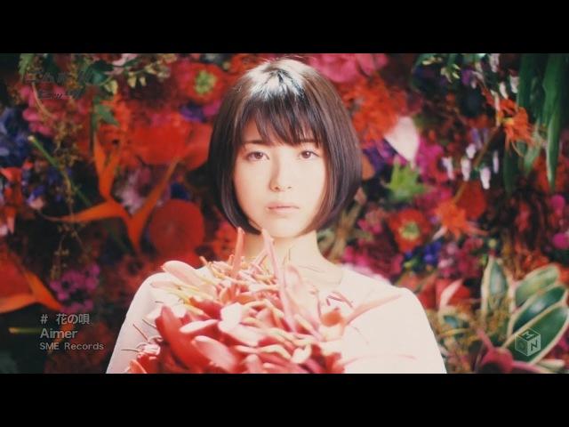 Aimer Hana no Uta and Minami Hamabe in MV Full ver English Romaji Lyrics