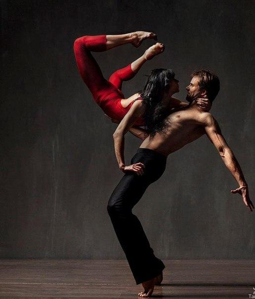 правила фотографирования танцоров птиц бурыми