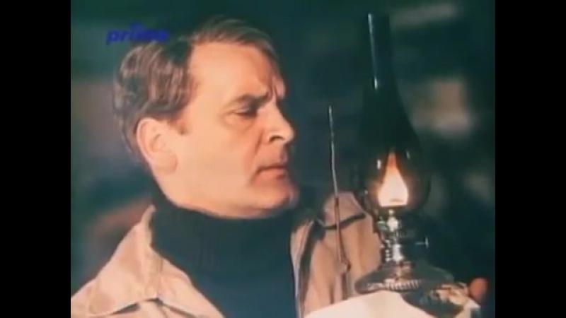 30 случаев майора Земана