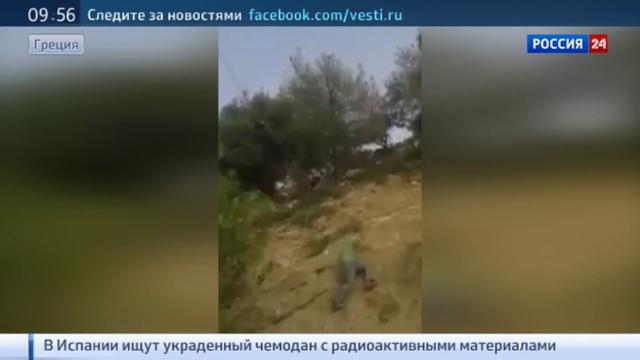 Новости на Россия 24 • В Грециии спасли козла зацепившегося рогами за линию электропередач Видео