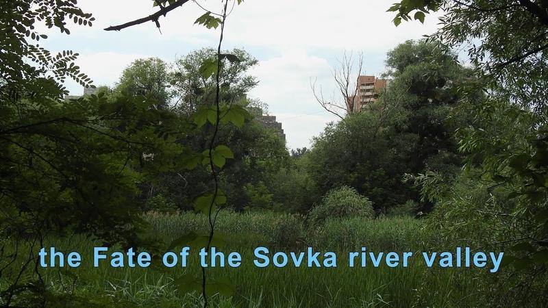 Річка Совка і Совські Ставки їх доля вирішується тут і зараз 2018 06 19