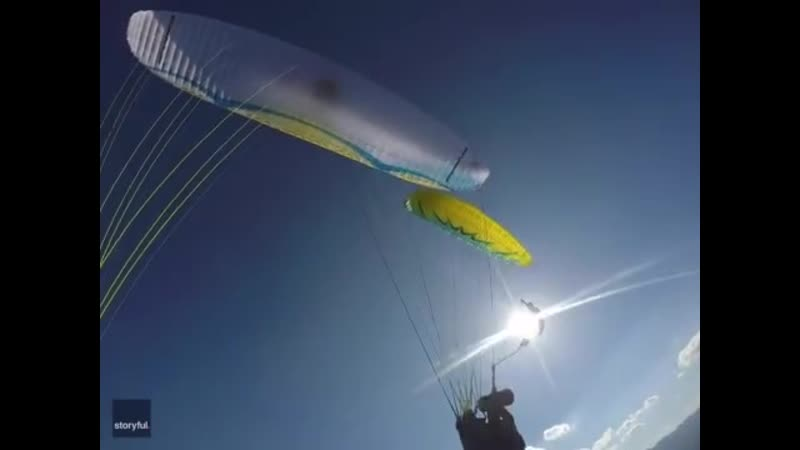 Swooping Bird of Prey Narrowly Avoids Mid-Air Collision With Paraglider