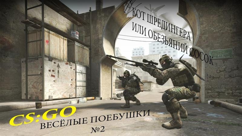 CS GO Весёлые поебушки №2 Кот ШРЕДИНГЕРА или обезьяний сосок