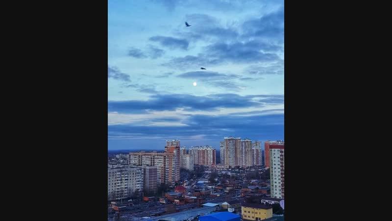 Видео garry trueman Доброе утро или вечер 🤔