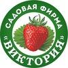 """Садовая фирма """"ВИКТОРИЯ"""""""