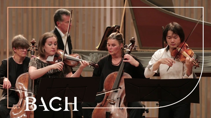 Bach - Concerto for two violins in D minor BWV 1043 - Sato | Netherlands Bach Society
