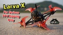 Best Toothpick drone Freestyle Larva X FPV Racing Drone