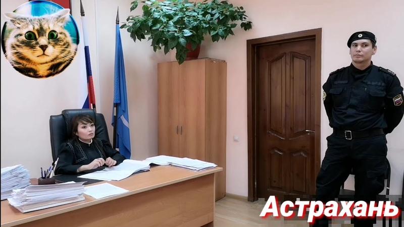 Жёсткий допрос приставов (ЧОПовцев) свидетелями. Уровень судейства в УК РФ-ия.