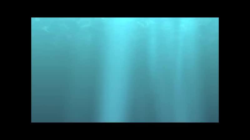Water belly preggo bloat