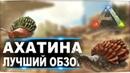Ахатина Achatina в АРК Лучший обзор приручение и способности улиток в ark