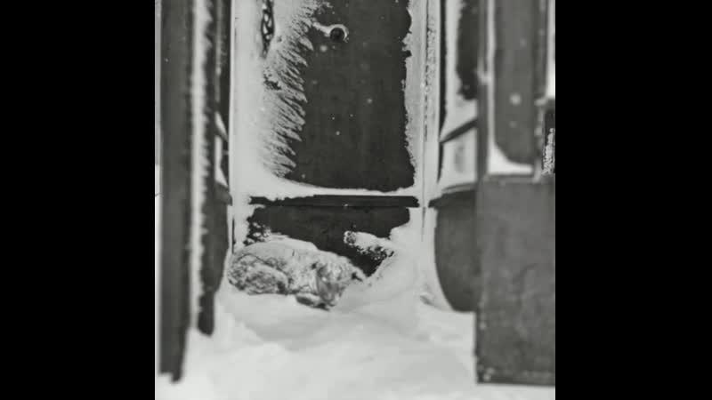 В надежде на помощь 1967 Фотограф Павел Кривцов Hoping for help 1967 Photographer Pavel Krivtsov