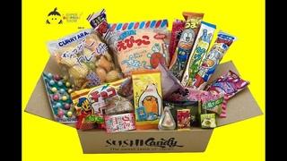 Japanese Candy gift box 20pc SURPRISE set japanese food sweet dagashi