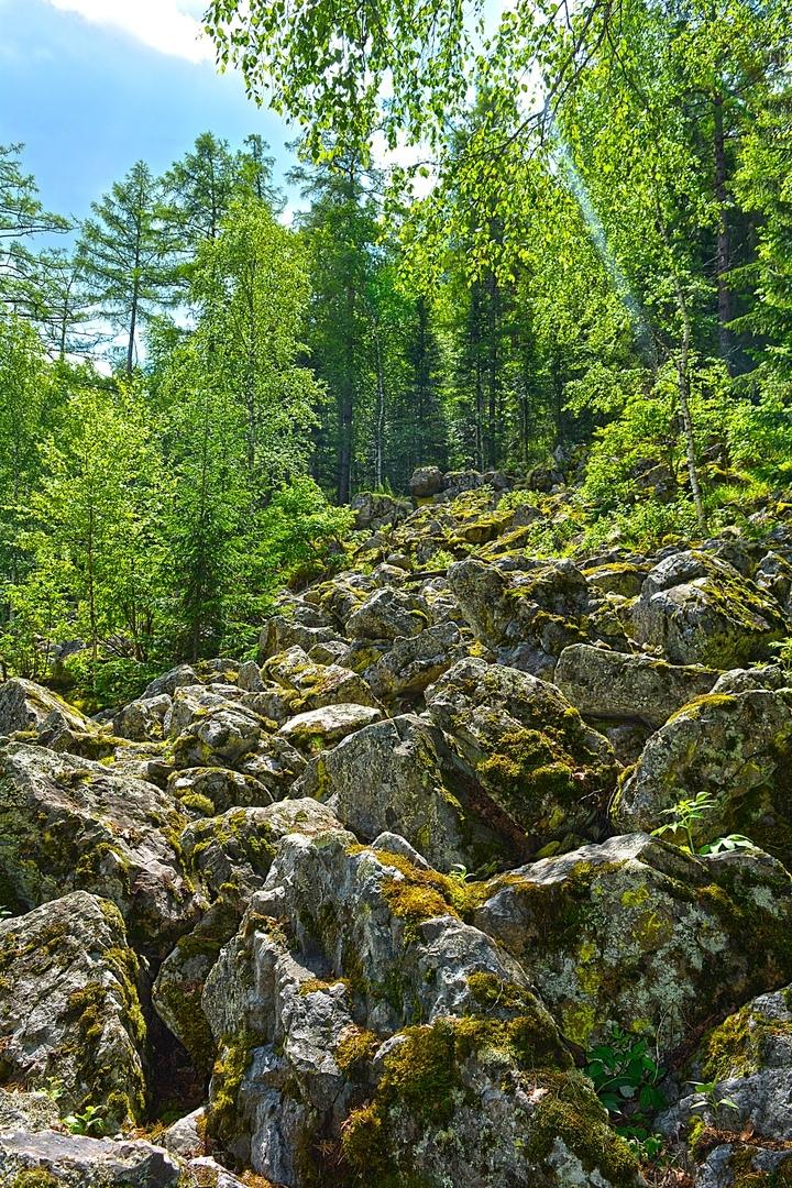 Курумник — визитная карточка Южного Урала. Такие беспорядочные каменные валуны, покрытые лишайником, можно встретить тут повсеместно.
