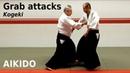 Aikido GRAB ATTACKS, kogeki, by Stefan Stenudd, 7 dan Aikikai shihan