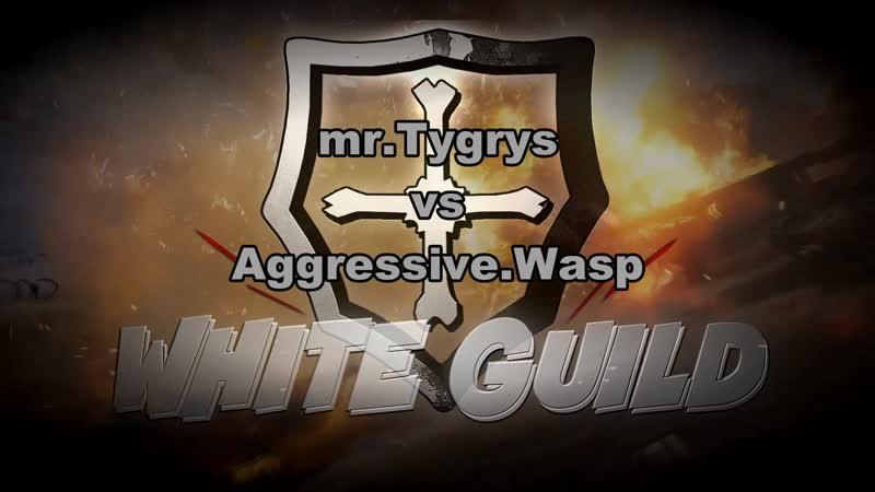 Турнир соло №1 mr.Tygrys vs Aggressive.Wasp