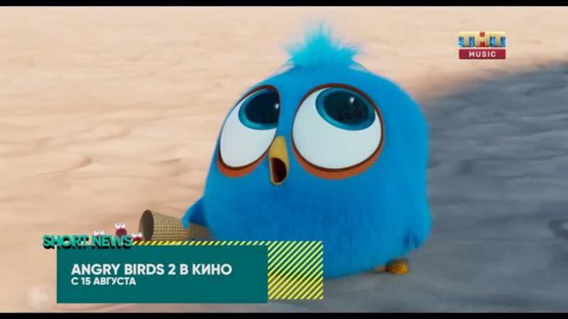 SHORT NEWS | КИНО: «Angry Birds 2 в кино», «Ангел мой», «Смерть и жизнь Джона Ф. Донована»
