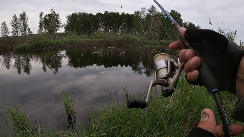 Летняя рыбалка. Ловля щуки! Зрелищная рыбалка! Щука на воблеры и на неогрузку. Рыбалка2020.