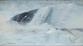Гигантское чудовище появилось после обрушения Ледяной стены