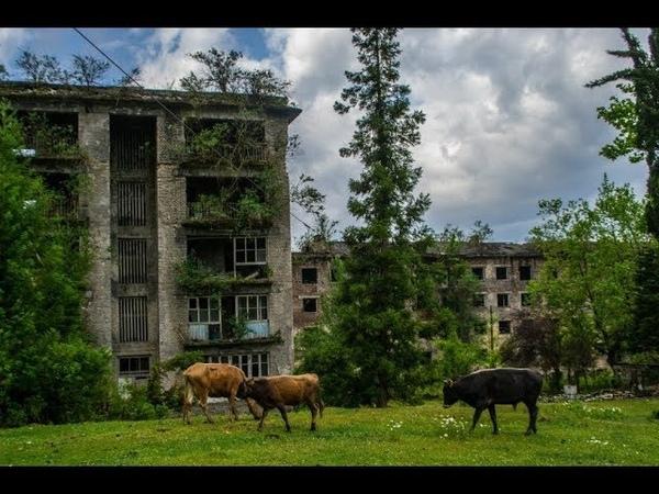 Скупаются дома и недвижимость повсеместно и усиленное создание русско-китайских семей...