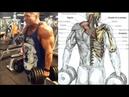 5 Rutinas Para Hombros Grandes y Redondos, 5 Routines for Large and Round Shoulders