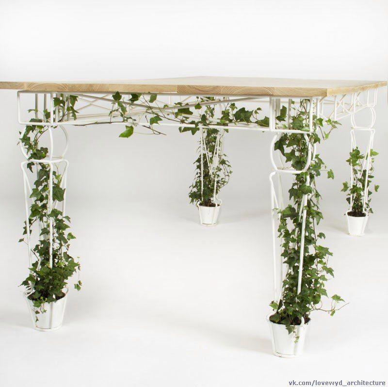10 пространств, созданных специально для комнатных растений