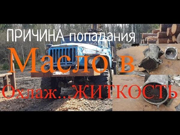Грузовик Урал Причина попадания моторного масла в охлаждающую жидкость Двигателя МАЗ 6 ка Турбо 0