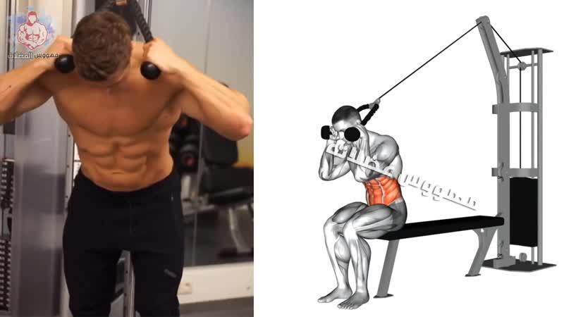 6 abdos workout