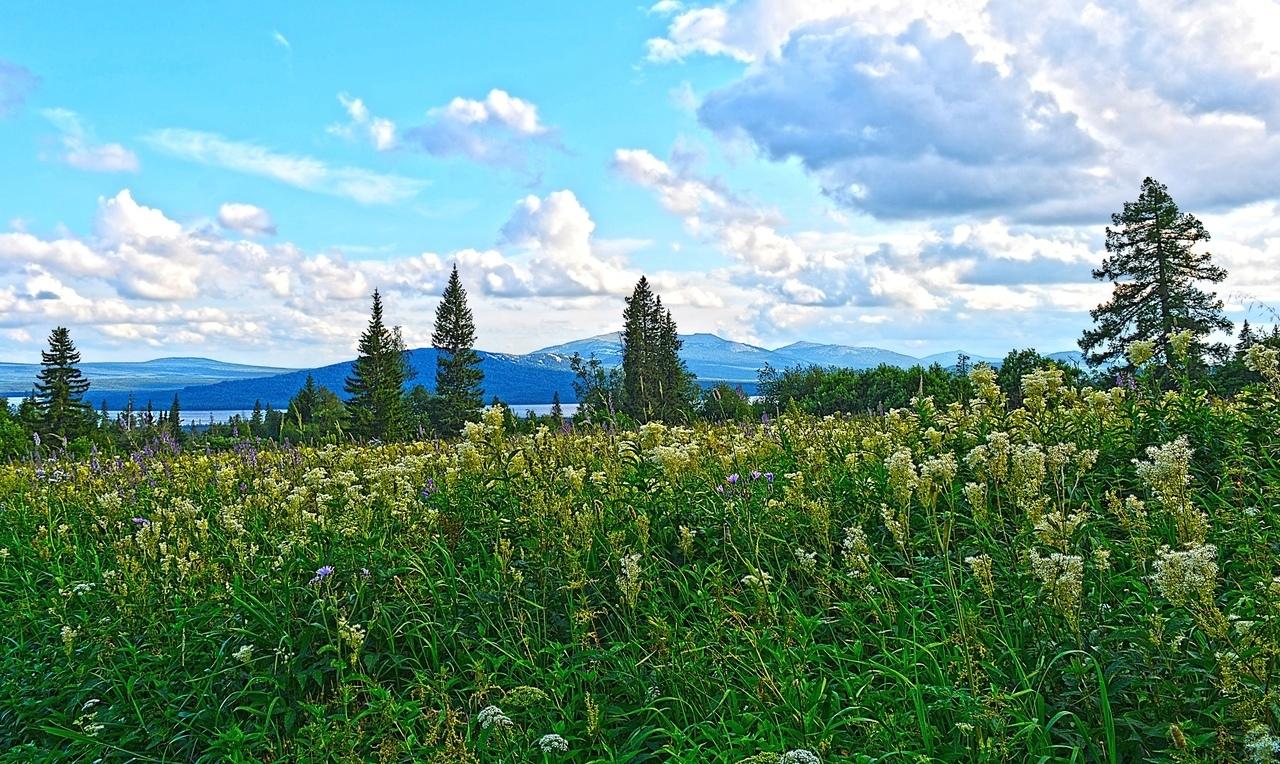 За лугом виднеется озеро Зюраткуль. Тёмно-синяя гора на ближнем плане за озером — это Лукаш. А за ней голубеют вершины хребта Нургуш. Туда ходят бывалые путешественники с ночёвкой в горах.