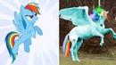 Как бы выглядели Мои маленькие Пони в реальной жизни