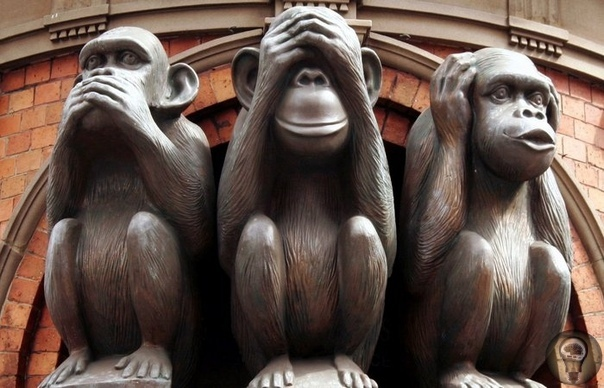 Мидзару, Кикадзару, Ивадзару: Почему три японских обезьяны стали символом женской мудрости
