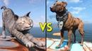 питбули против кошек Fallout 4 - 250 CATS vs 250 DOGS - Battles 18