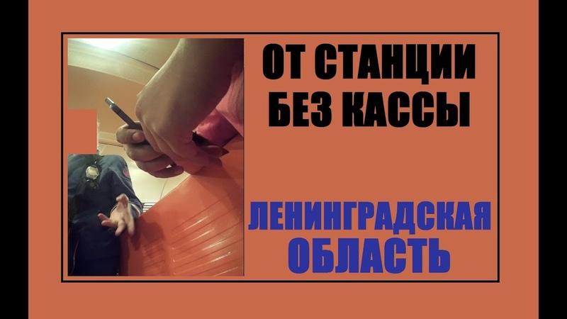 От станции без кассы. Дрессировка контролёров электрички в Ленинградской области