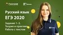 ЕГЭ по Русскому языку 2020. Задание 1-3. Теория и практика. Работа с текстом