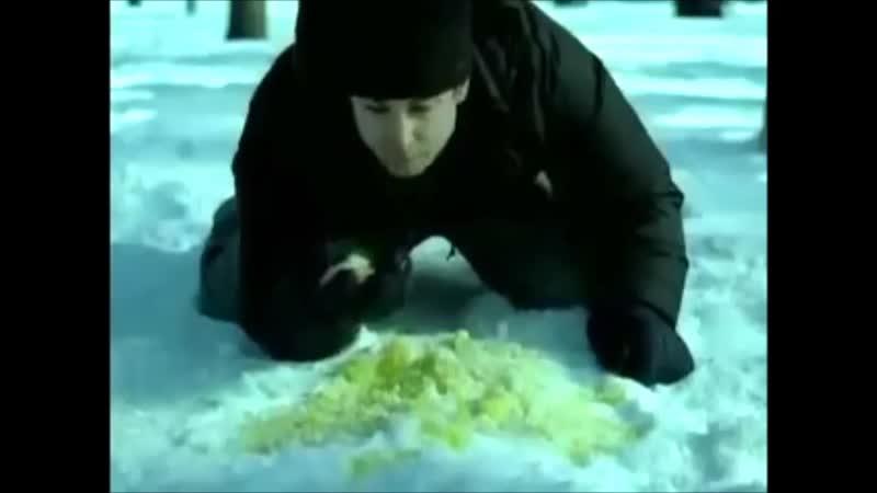 фото прикол про желтый снег расписались, вскоре появился