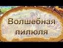Волшебная пилюля / Панацея (документальный фильм о последствиях высокоуглеводной диеты)