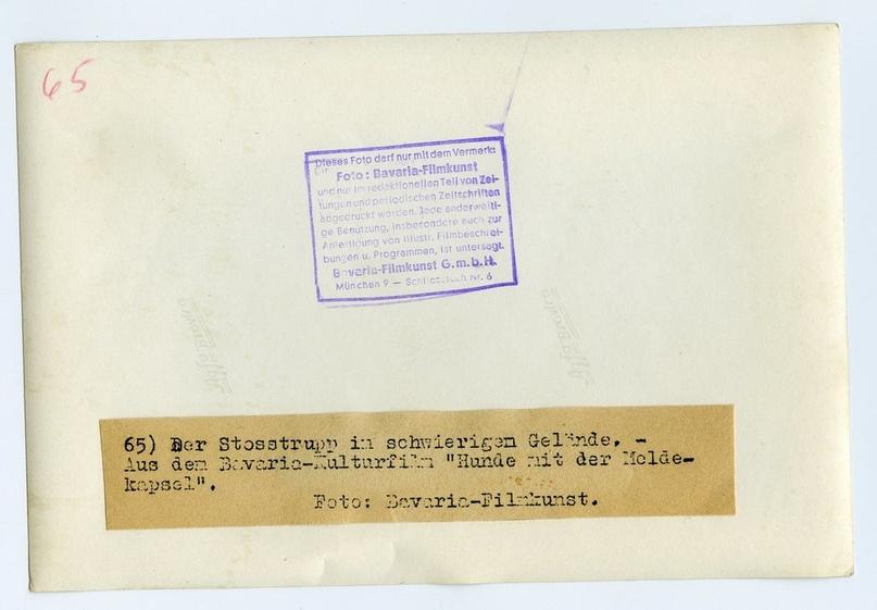 Рядовой вермахта Тассо, изображение №17