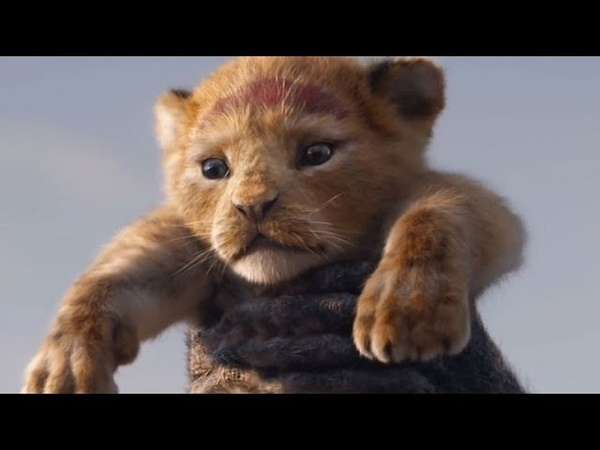 O Ciclo sem fim - O Rei Leão ( versão em português)