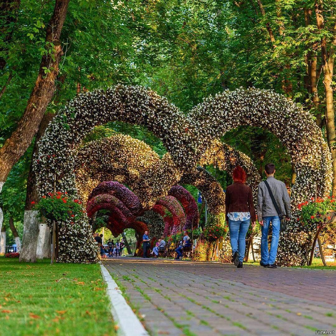 представляет собой самый красивый парк в москве летом фото мозаика производства
