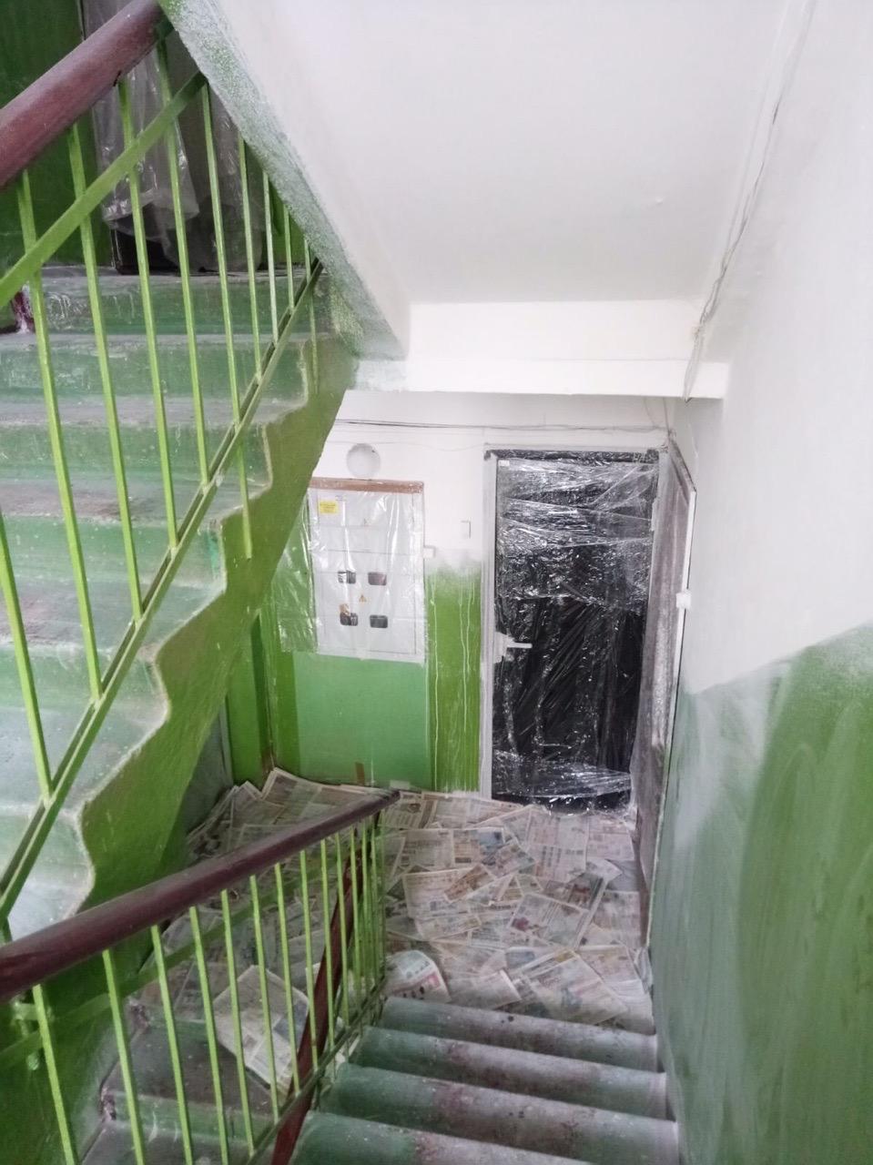 Улица Добролюбова дом 10 побелка подъезда на