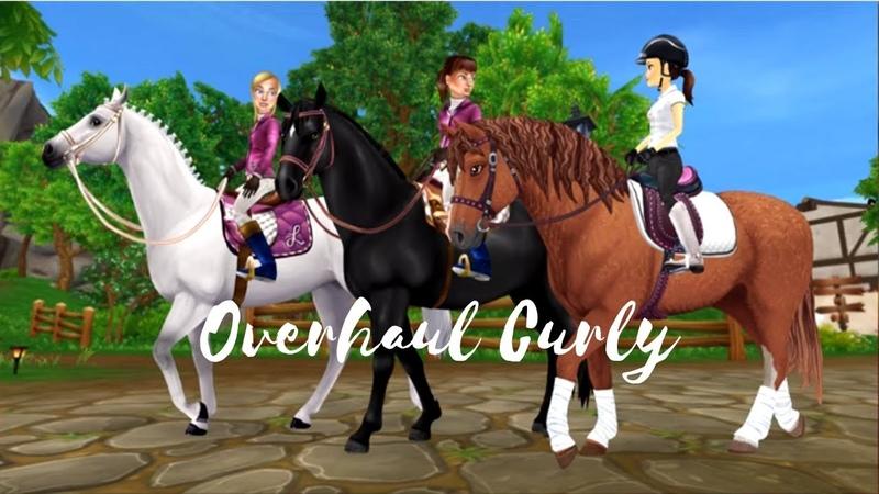 SSO SPOILER NEW HORSE COAT   Curly