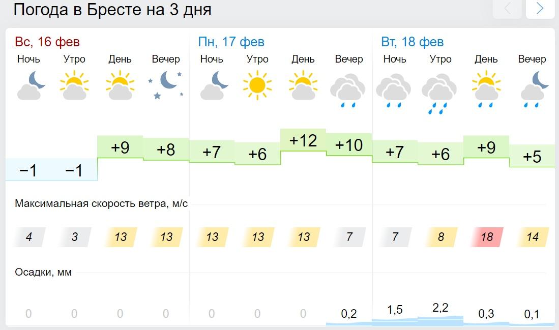 Будет рекорд? До +12°С ожидается в Беларуси 17 февраля