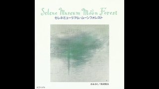 Kensuke Mitome (三留研介) & Gota Wakabayashi (若林剛太) - Selene Museum Moon Forest (1993) [Full Album]