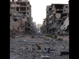 Какой была бы Сирия без помощи России