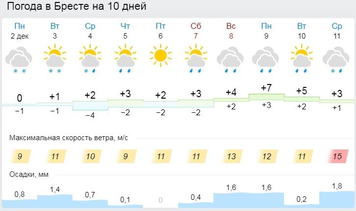 В середине недели в Беларуси потеплеет: ожидается мокрый снег с дождем и гололед