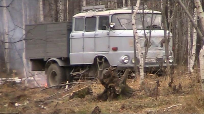 Ифа 50 бригадная с музыкой едет в лес за дровами с хорошим настроением
