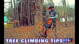 Arborist Tree Climbing Tips!!!
